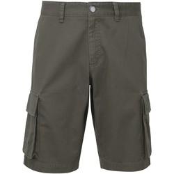 textil Hombre Shorts / Bermudas Asquith & Fox AQ054 Gris