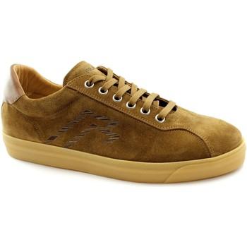 Zapatos Hombre Zapatillas bajas Frau FRA-E21-2650-TO Marrone