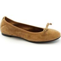 Zapatos Mujer Bailarinas-manoletinas Frau FRA-CCC-7050-BR Marrone