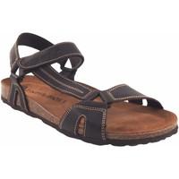 Zapatos Hombre Sandalias Interbios Sandalia caballero  9562 marron Marrón