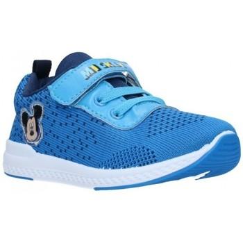 Zapatos Niño Zapatillas bajas Cerda 2300004834 Niño Azul bleu
