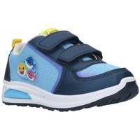 Zapatos Niño Zapatillas bajas Cerda 2300004720 Niño Celeste bleu