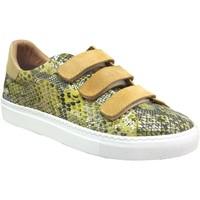 Zapatos Mujer Zapatillas bajas K.mary Clany amarillo