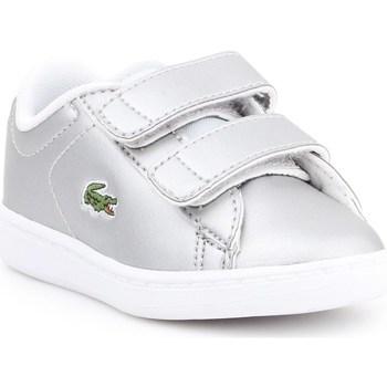 Zapatos Niños Zapatillas bajas Lacoste Carnaby Evo Plateado