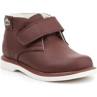 Zapatos Niños Botas de caña baja Lacoste 730SPI301177T Marrón