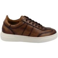 Zapatos Hombre Zapatillas bajas Calce 873 Marrón