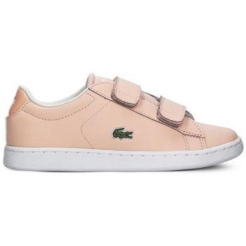 Zapatos Niña Zapatillas bajas Lacoste Carnaby Evo Strap Rosa