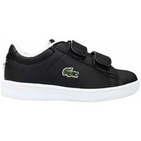 Zapatos Niños Zapatillas bajas Lacoste Carnaby Evo Strap Negros