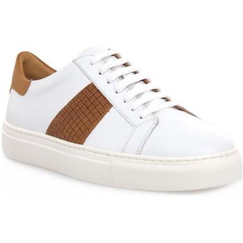Zapatos Hombre Zapatillas bajas Soldini COLORADO BIANCO CUOIO Bianco