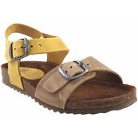 Zapatos Niño Senderismo Interbios Sandalia niño  7148n mostaza Amarillo