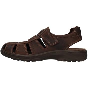 Zapatos Hombre Sandalias Enval 7219111 MARRÓN