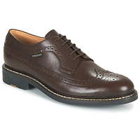 Zapatos Hombre Derbie Pellet NORMAN Marrón