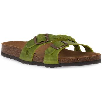 Zapatos Mujer Zuecos (Mules) Bioline 233 ALOHE INGRASSATO Verde