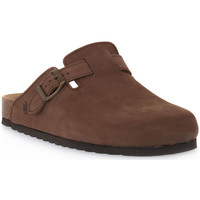 Zapatos Zuecos (Clogs) Bioline 1900 MORO NABOUK Marrone