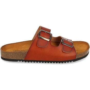 Zapatos Mujer Sandalias Clowse VR1-268 Camel