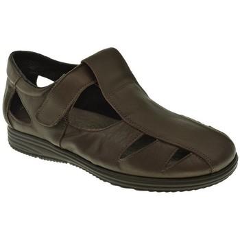 Zapatos Hombre Sandalias Duendy SANDALIA HOMBRE  MARRON Marrón