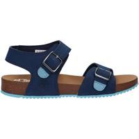 Zapatos Niños Sandalias Timberland A4331 CASTLE ISLAND Azul