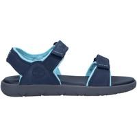 Zapatos Niños Sandalias Timberland A43FH NUBBLE Azul