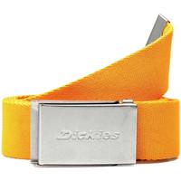 Accesorios textil Cinturones Dickies DK0A4XBYB591 Amarillo