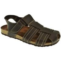 Zapatos Hombre Sandalias Interbios SANDALIA HOMBRE  MARRON Marrón