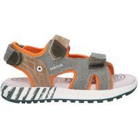 Zapatos Niño Sandalias Geox J02AVB 0NB22 J ALBEN Verde