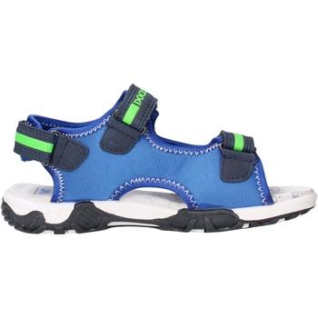 Zapatos Niño Sandalias Docksteps - Sandalo blu/verde BOXE3 BLU