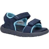 Zapatos Niño Sandalias de deporte Timberland A43FS NUBBLE Azul