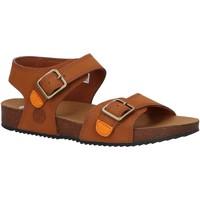 Zapatos Niños Sandalias Timberland A4339 CASTLE ISLAND Marr?n