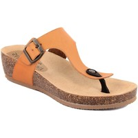 Zapatos Mujer Chanclas Summery  Beige