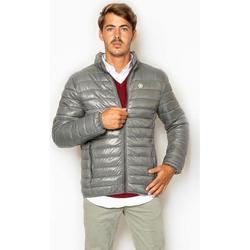 textil Hombre Plumas La Promenade CQ01S007 gris