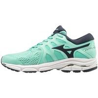 Zapatos Mujer Fitness / Training Mizuno Wave Equate 4 Negros, Verdes