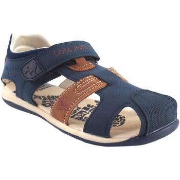 Zapatos Niño Multideporte Lois Sandalia niño  46154 azul Marrón