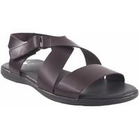 Zapatos Hombre Sandalias Bienve Sandalia caballero  130 marron Marrón