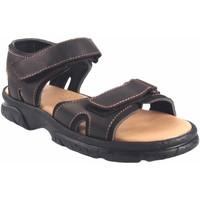 Zapatos Hombre Sandalias Bienve Sandalia caballero  458 marron Marrón