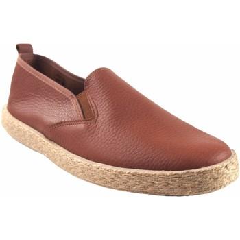 Zapatos Hombre Zapatillas bajas Ne Les Zapato caballero NELES 6903 cuero Marrón