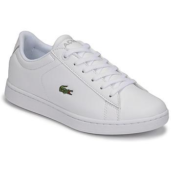 Zapatos Niños Zapatillas bajas Lacoste CARNABY EVO BL 21 1 SUJ Blanco