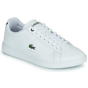 Zapatos Hombre Zapatillas bajas Lacoste CARNABY BL21 1 SMA Negro