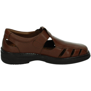 Zapatos Hombre Sandalias Primocx Sandalias de piel MARRÓN
