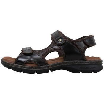 Zapatos Hombre Sandalias Panama Jack  Marrón