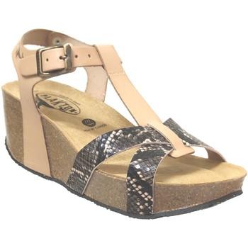 Zapatos Mujer Sandalias Plakton So cross Cuero beige