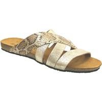 Zapatos Mujer Zuecos (Mules) Plakton Man perla Platino metálico