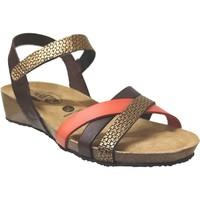 Zapatos Mujer Sandalias Plakton Note Cuero marrón/dorado