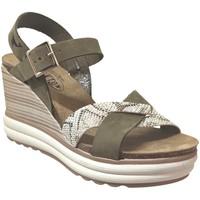 Zapatos Mujer Sandalias Plakton Plantio Nubuck caqui