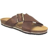 Zapatos Hombre Zuecos (Mules) Plakton Bate Cuero marrón