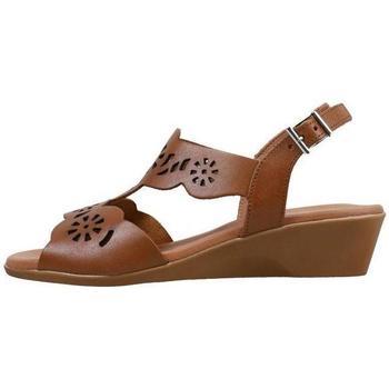 Zapatos Mujer Sandalias Amanda  Marrón