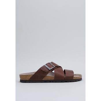 Zapatos Hombre Zuecos (Mules) Senses & Shoes  Marrón