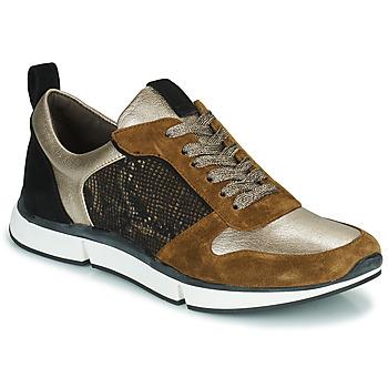 Zapatos Mujer Zapatillas bajas Adige VANILLE2 V3 GALAXY ONYX Marrón