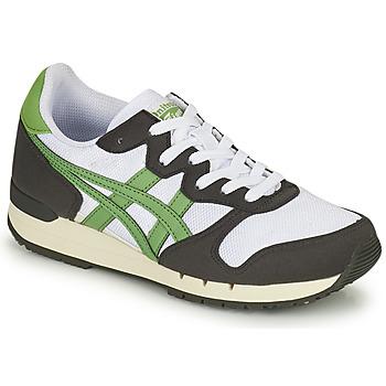 Zapatos Zapatillas bajas Onitsuka Tiger ALVARADO Verde / Negro / Blanco