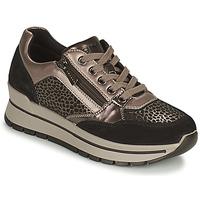 Zapatos Mujer Zapatillas bajas IgI&CO DONNA ANISIA Plata / Negro