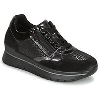 Zapatos Mujer Zapatillas bajas IgI&CO DONNA ANISIA Negro